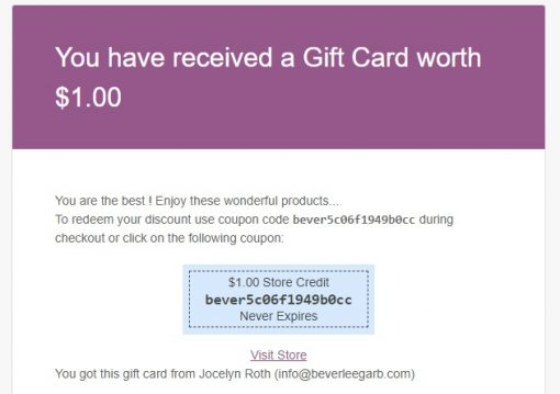 biodroga skin care products gift card